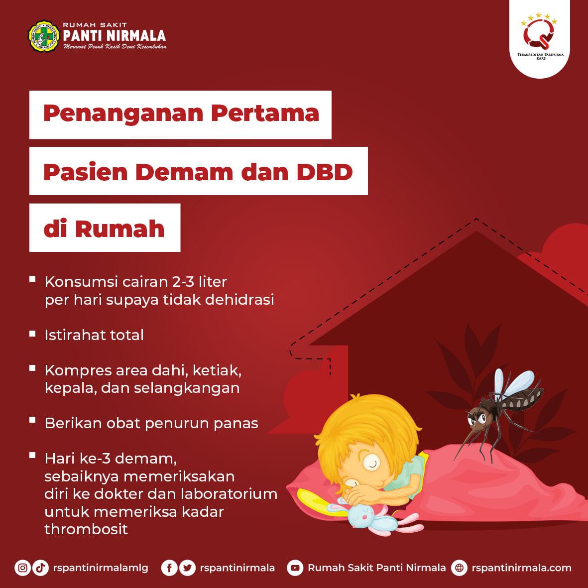 dbd-atau-demam-berdarah-dengue-22